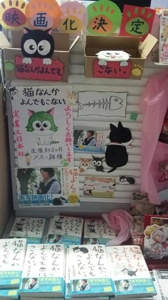 猫なんかよんでもこない福島.jpg