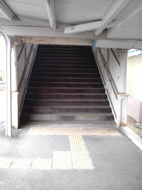 kuramoto3.jpg
