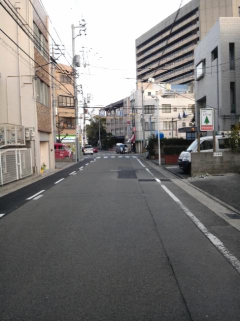 tokusimabasi2.jpg