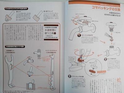 NCM_0012.JPG